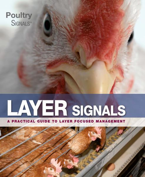 Layer Signals